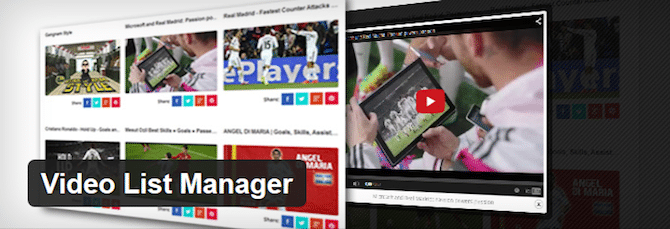 Video List Manager