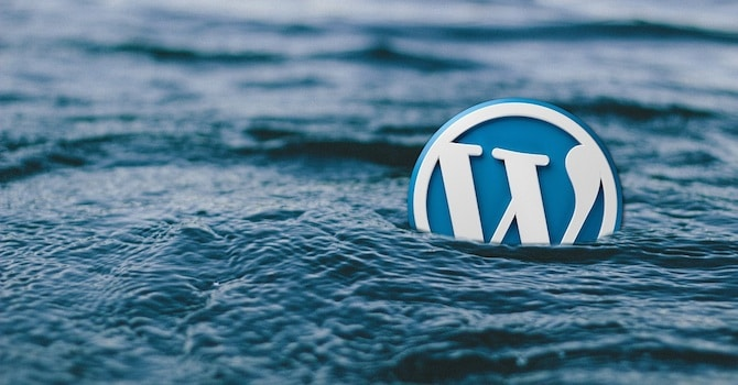 Future of WordPress
