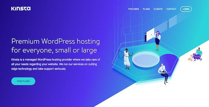 Kinsta Hosting / Homepage
